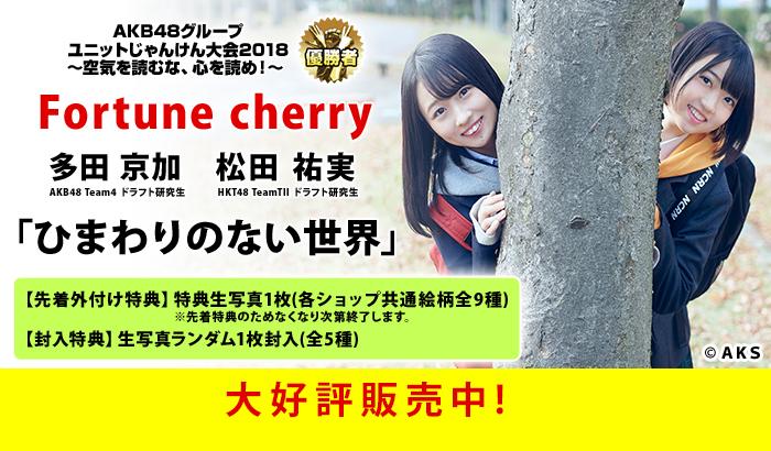 Fortune cherry「ひまわりのない世界」