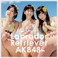 ラブラドール・レトリバー Type4【初回限定盤(CD+DVD複合)】