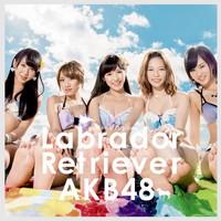ラブラドール・レトリバー TypeA【初回限定盤(CD+DVD複合)】