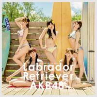 ラブラドール・レトリバー TypeB【初回限定盤(CD+DVD複合)】