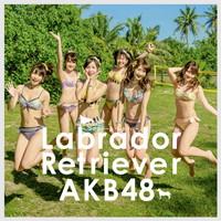 ラブラドール・レトリバー TypeK【初回限定盤(CD+DVD複合)】