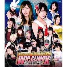豆腐プロレス The REAL 2017 WIP CLIMAX in 8.29 後楽園ホール 【Blu-ray】
