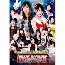 豆腐プロレス The REAL 2017 WIP CLIMAX in 8.29 後楽園ホール 【DVD】